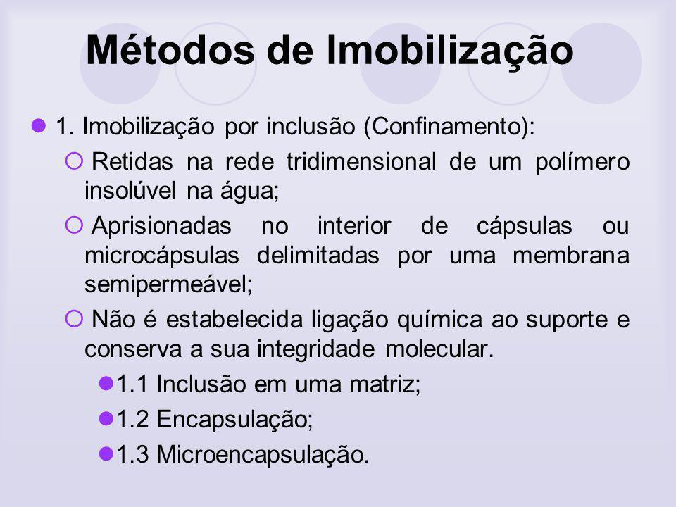 1. Imobilização por inclusão (Confinamento): Retidas na rede tridimensional de um polímero insolúvel na água; Aprisionadas no interior de cápsulas ou