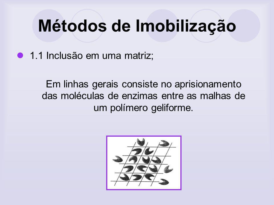 Imobilização de Enzimas Desvantagens Aleatoridade da interação enzima-substrato; Inexistência de um método geral de imobilizacao; Atividade catalítica devido a efeitos: Difusionais Microambiente Estéricos / Conformacionais