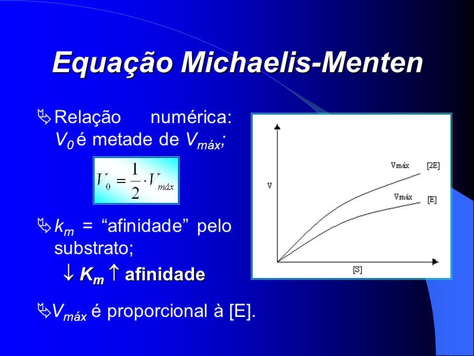 Equação Michaelis-Menten Relação numérica: V 0 é metade de V máx ; k m = afinidade pelo substrato; K m afinidade K m afinidade V máx é proporcional à