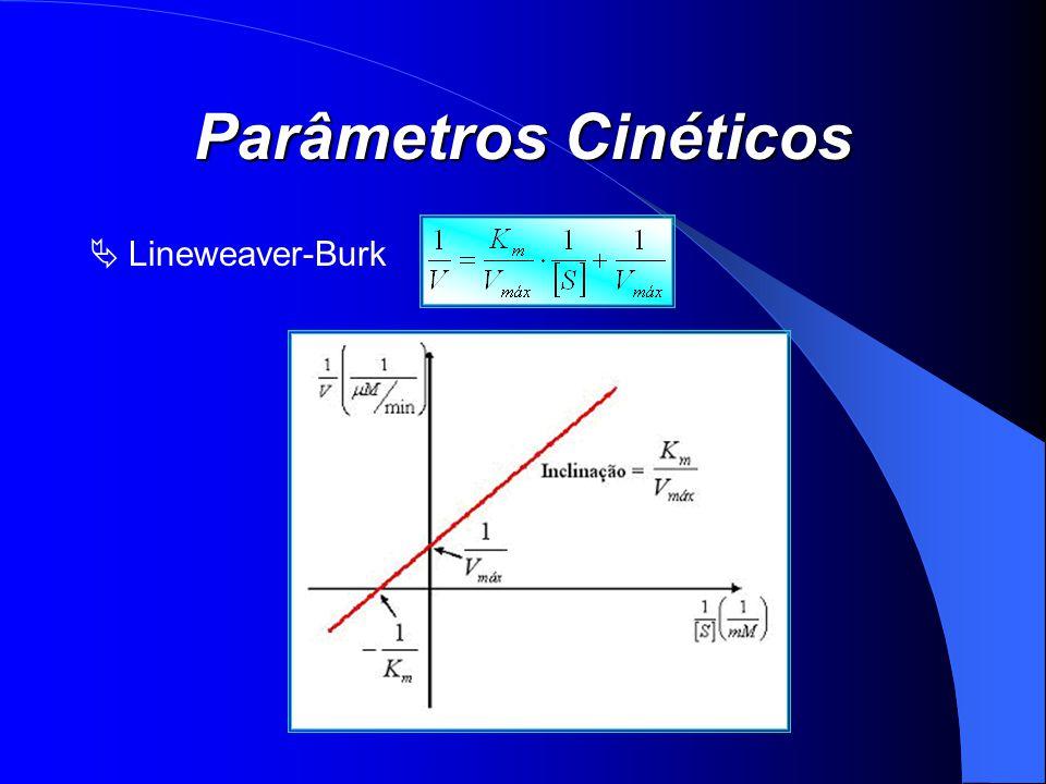 Parâmetros Cinéticos Lineweaver-Burk