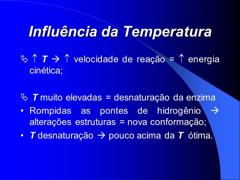 Influência da Temperatura T velocidade de reação = energia cinética; T muito elevadas = desnaturação da enzima Rompidas as pontes de hidrogênio altera
