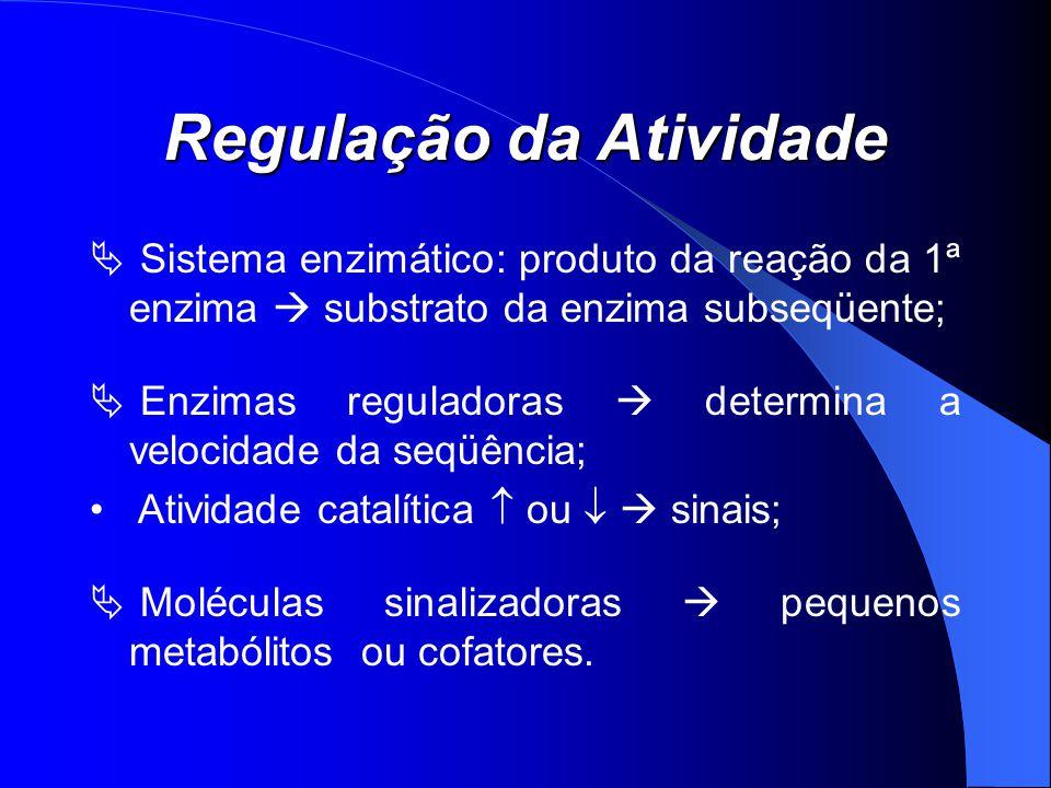 Regulação da Atividade Sistema enzimático: produto da reação da 1ª enzima substrato da enzima subseqüente; Enzimas reguladoras determina a velocidade