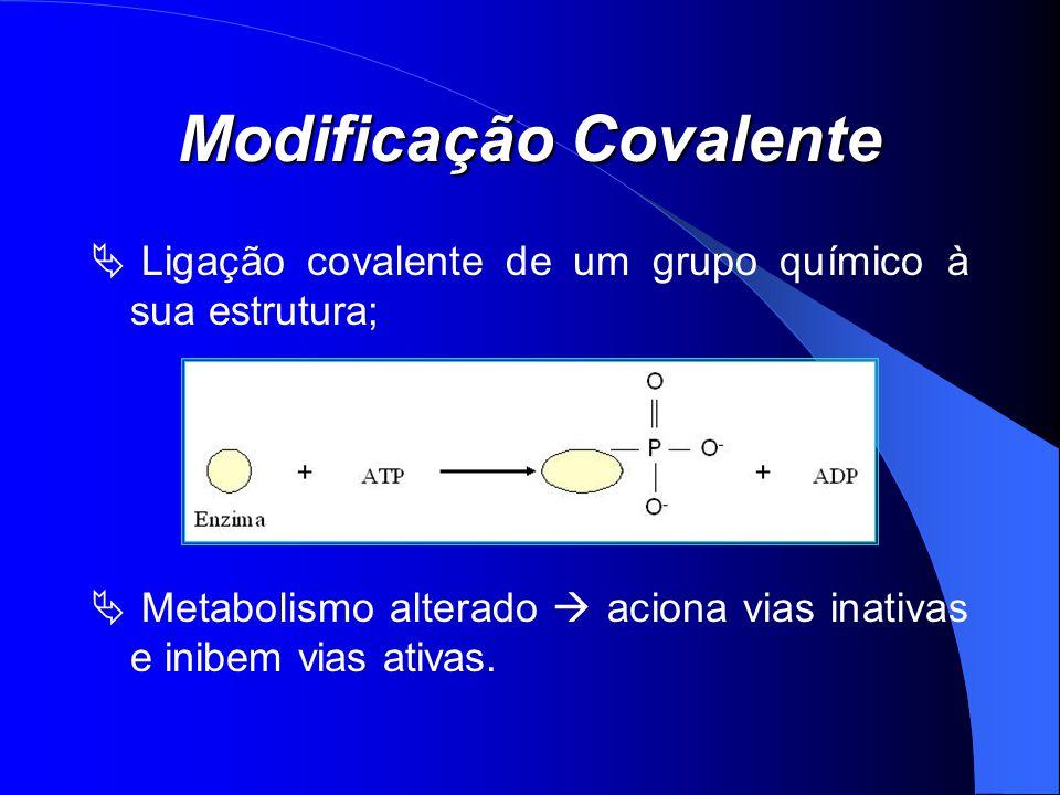 Modificação Covalente Ligação covalente de um grupo químico à sua estrutura; Metabolismo alterado aciona vias inativas e inibem vias ativas.
