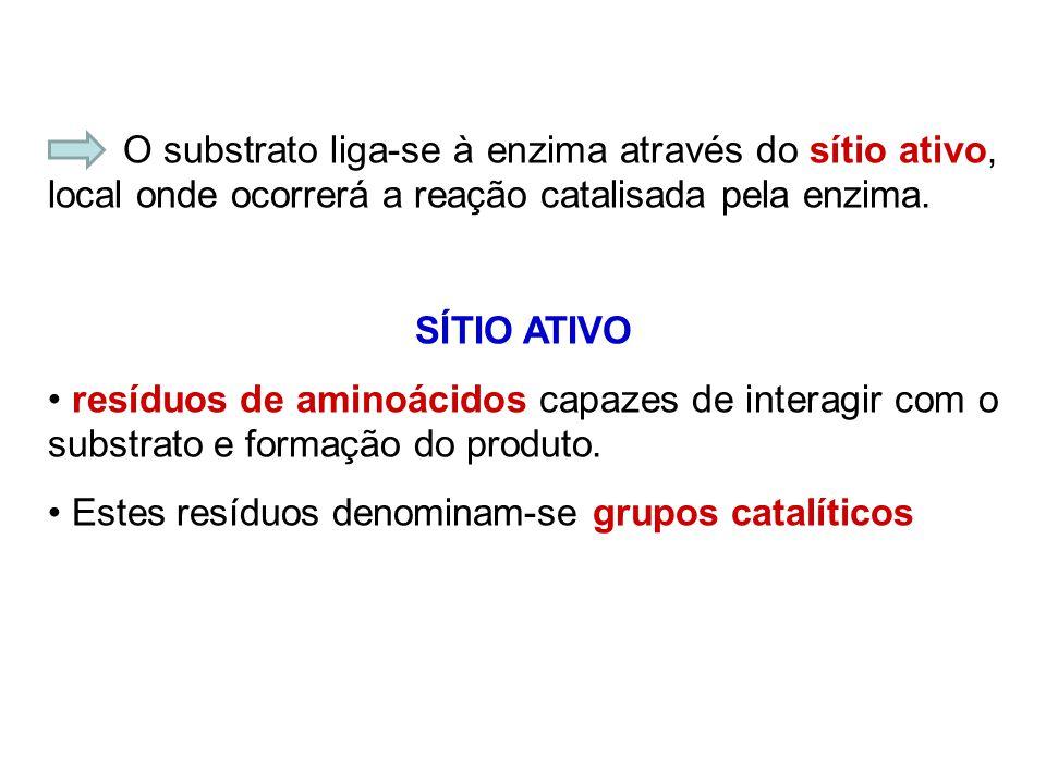 O substrato liga-se à enzima através do sítio ativo, local onde ocorrerá a reação catalisada pela enzima. SÍTIO ATIVO resíduos de aminoácidos capazes