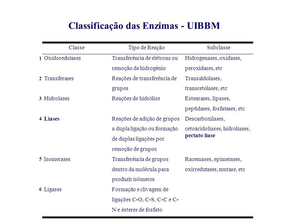 Classificação das Enzimas - UIBBM Classe Tipo de Reação Subclasse Oxidoredutases Transferência de elétrons ou remoção de hidrogênio Hidrogenases, oxid