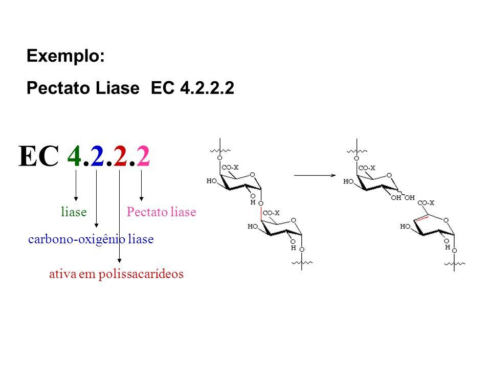 Exemplo: Pectato Liase EC 4.2.2.2 liase carbono-oxigênio liase ativa em polissacarídeos Pectato liase EC 4.2.2.2