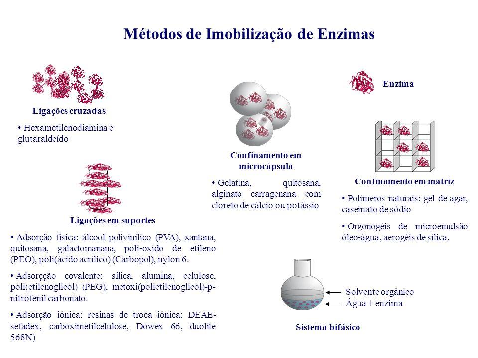 Confinamento em matriz Polímeros naturais: gel de agar, caseinato de sódio Orgonogéis de microemulsão óleo-água, aerogéis de sílica. Confinamento em m