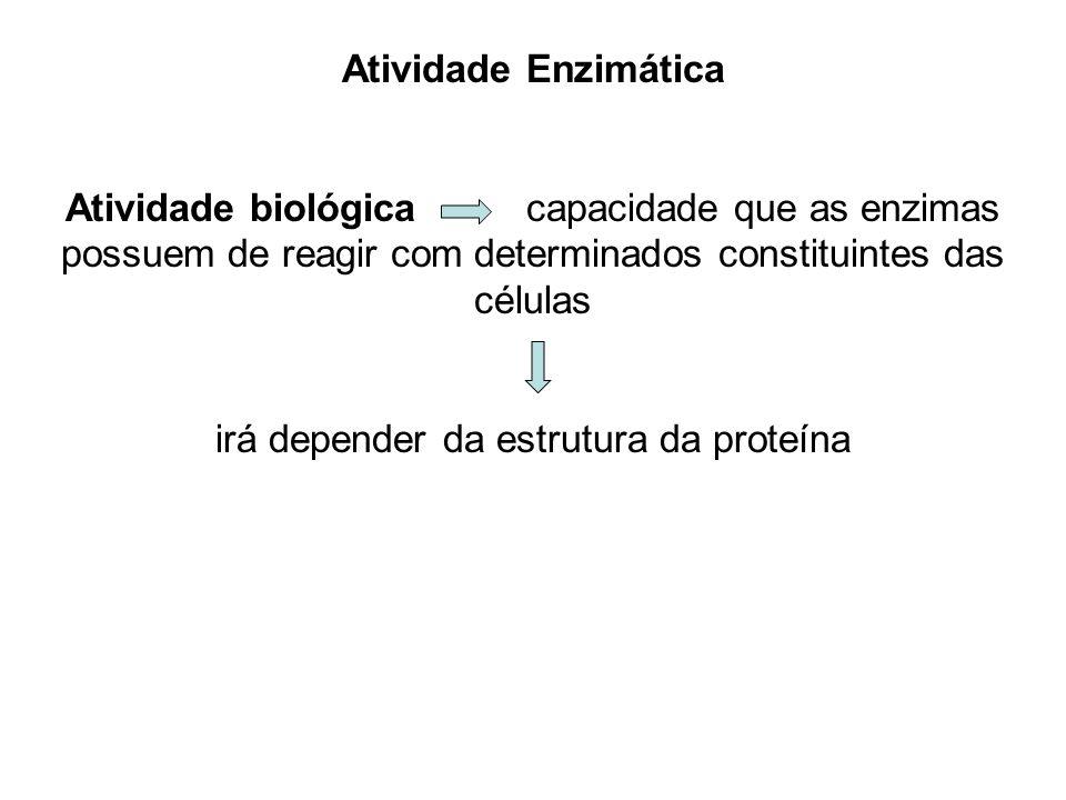 Atividade Enzimática Atividade biológica capacidade que as enzimas possuem de reagir com determinados constituintes das células irá depender da estrut