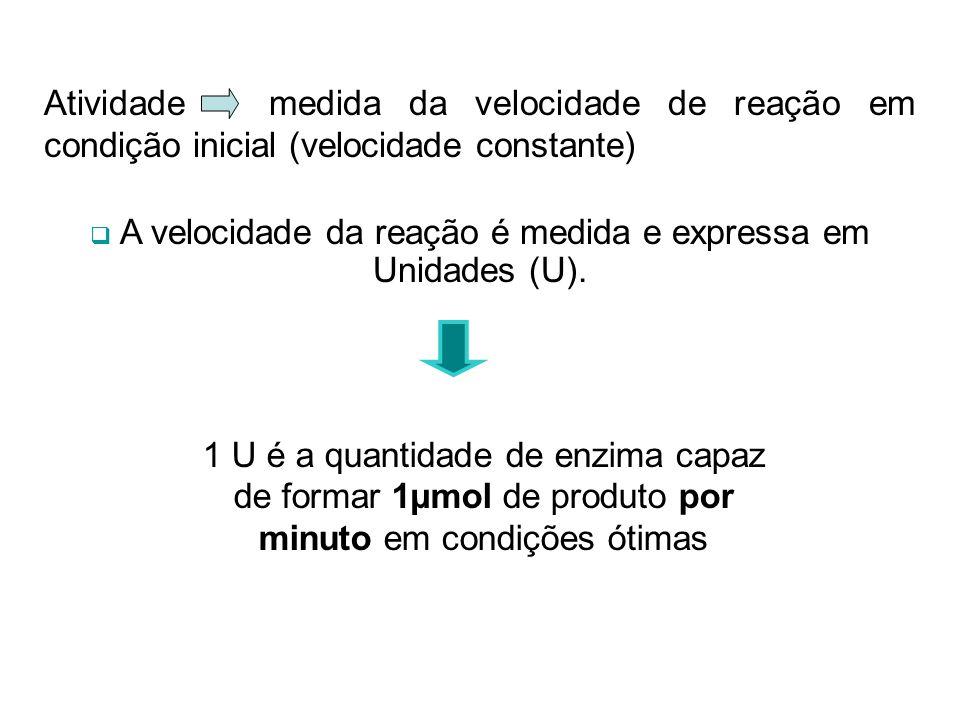 Atividade medida da velocidade de reação em condição inicial (velocidade constante) A velocidade da reação é medida e expressa em Unidades (U). 1 U é