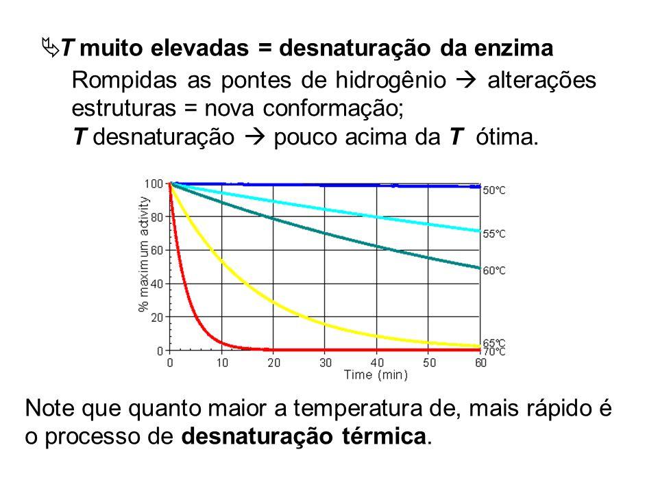 Note que quanto maior a temperatura de, mais rápido é o processo de desnaturação térmica. Rompidas as pontes de hidrogênio alterações estruturas = nov