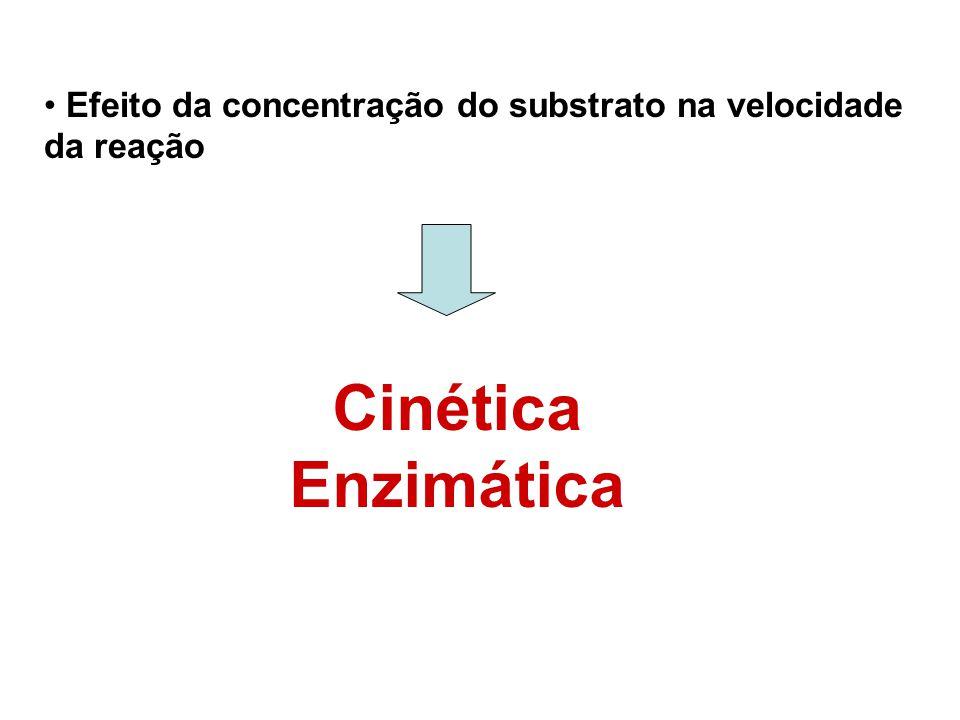 Efeito da concentração do substrato na velocidade da reação Cinética Enzimática