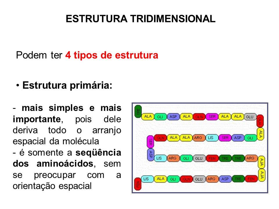 ESTRUTURA TRIDIMENSIONAL Podem ter 4 tipos de estrutura Estrutura primária: - mais simples e mais importante, pois dele deriva todo o arranjo espacial