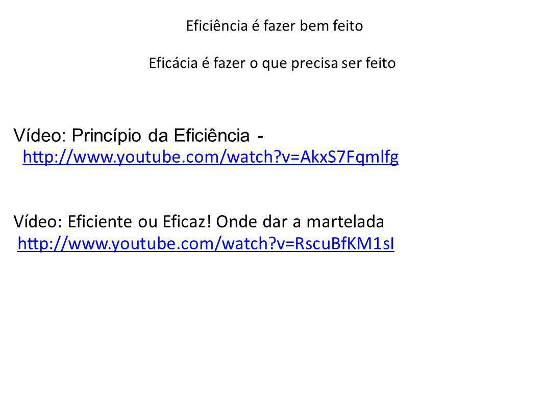 Eficiência é fazer bem feito Eficácia é fazer o que precisa ser feito Vídeo: Princípio da Eficiência - http://www.youtube.com/watch?v=AkxS7Fqmlfghttp: