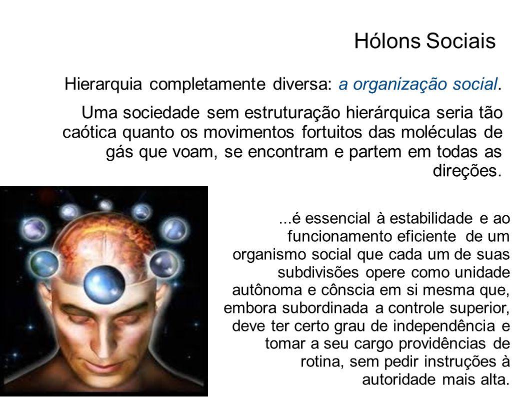 Hólons Sociais Hierarquia completamente diversa: a organização social. Uma sociedade sem estruturação hierárquica seria tão caótica quanto os moviment
