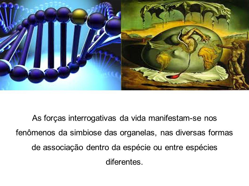 As forças interrogativas da vida manifestam-se nos fenômenos da simbiose das organelas, nas diversas formas de associação dentro da espécie ou entre e