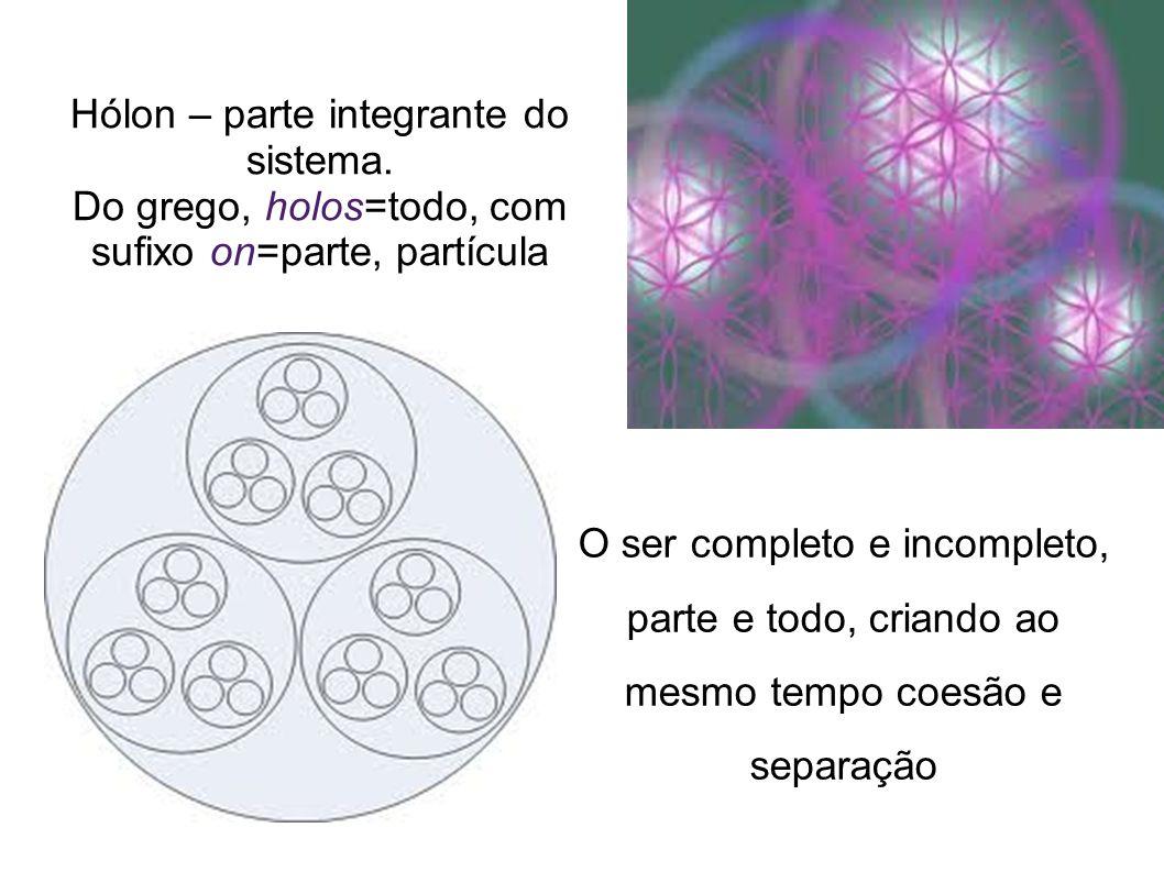 Hólon – parte integrante do sistema. Do grego, holos=todo, com sufixo on=parte, partícula O ser completo e incompleto, parte e todo, criando ao mesmo