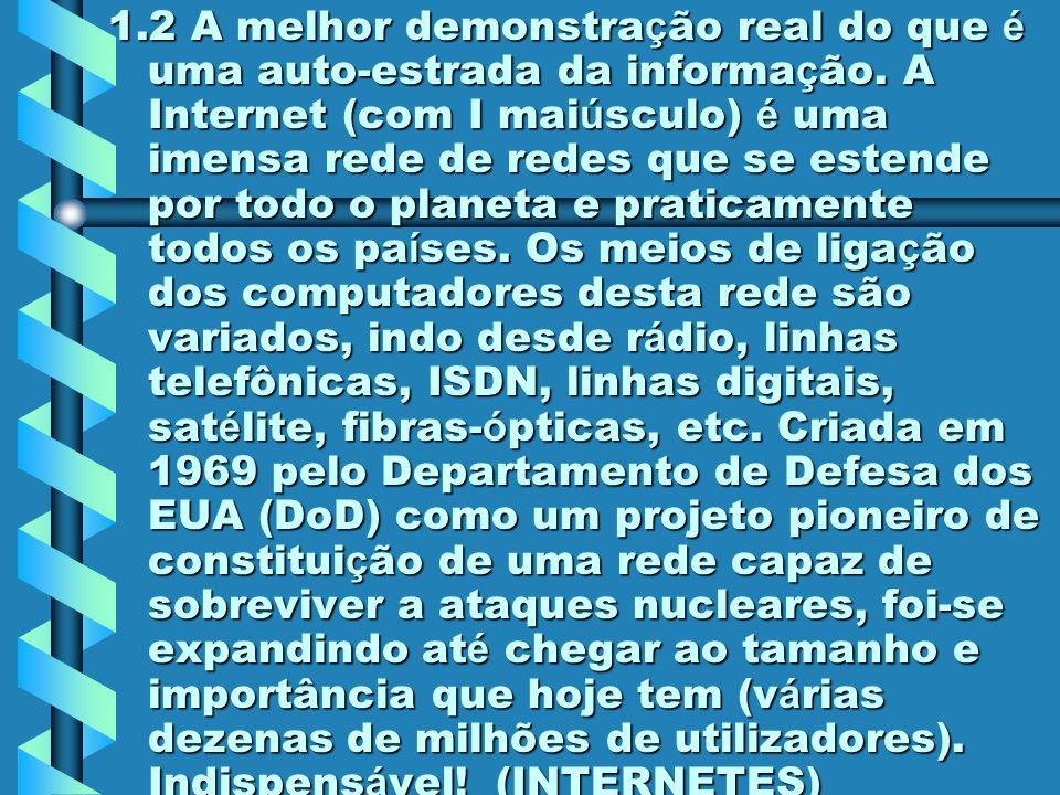 1.1 É constituída pela interligação de milhares de redes regionais e nacionais, criando uma rede virtual, ou seja, é uma rede de redes em que milhares de computadores comunicam entre si através de uma linguagem comum.