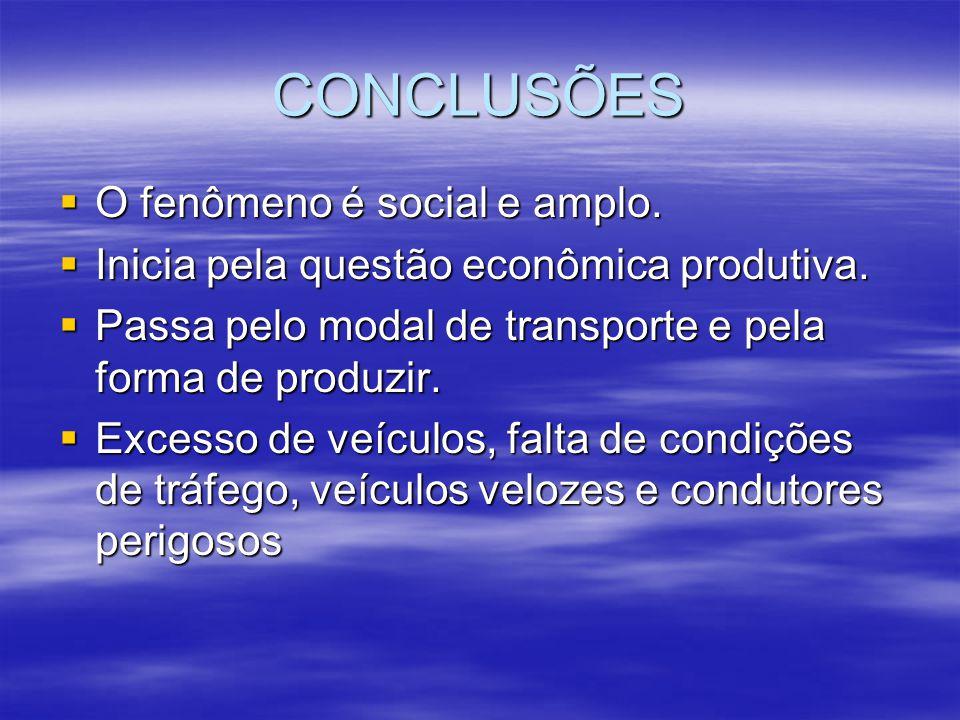 CONCLUSÕES O fenômeno é social e amplo. O fenômeno é social e amplo. Inicia pela questão econômica produtiva. Inicia pela questão econômica produtiva.