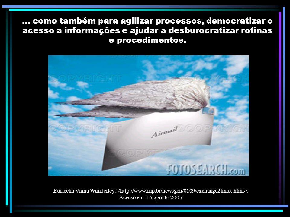... como também para agilizar processos, democratizar o acesso a informações e ajudar a desburocratizar rotinas e procedimentos. Euricélia Viana Wande