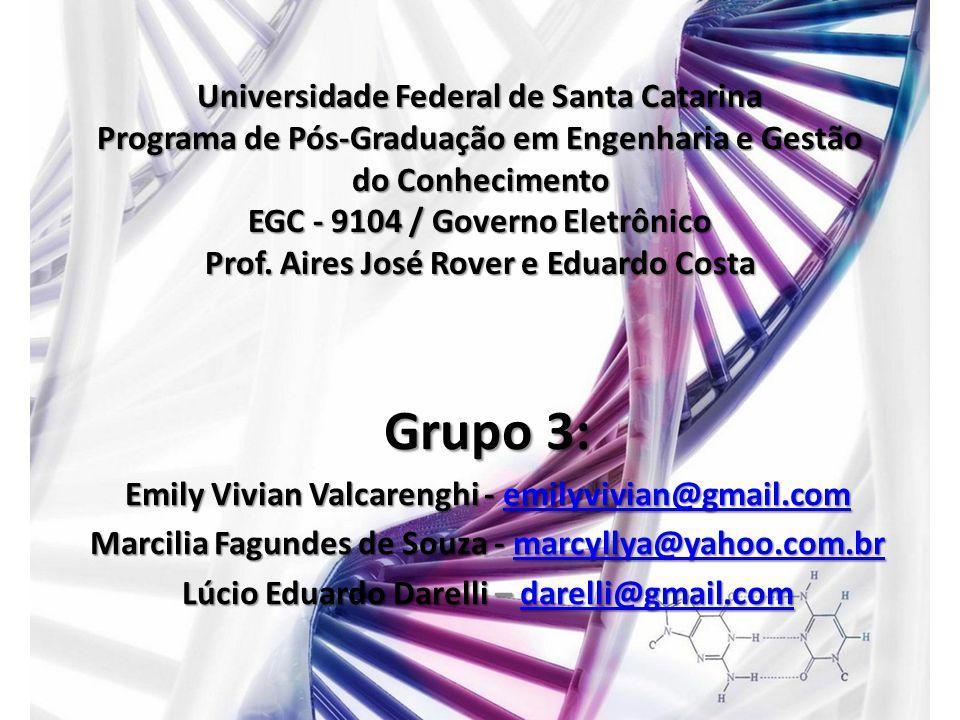 Universidade Federal de Santa Catarina Programa de Pós-Graduação em Engenharia e Gestão do Conhecimento EGC - 9104 / Governo Eletrônico Prof. Aires Jo