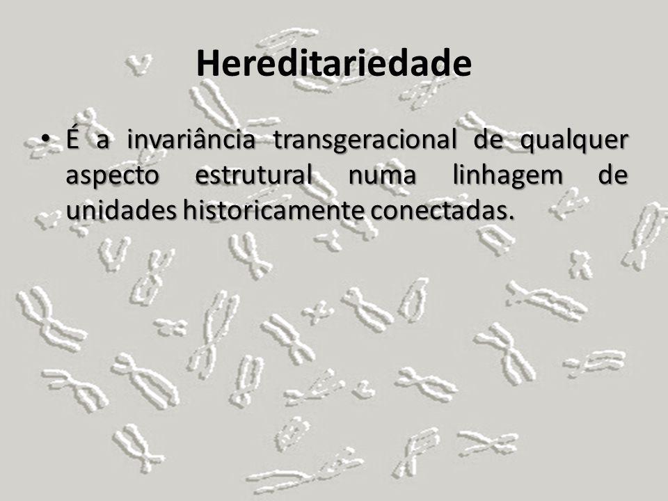 Hereditariedade É a invariância transgeracional de qualquer aspecto estrutural numa linhagem de unidades historicamente conectadas. É a invariância tr