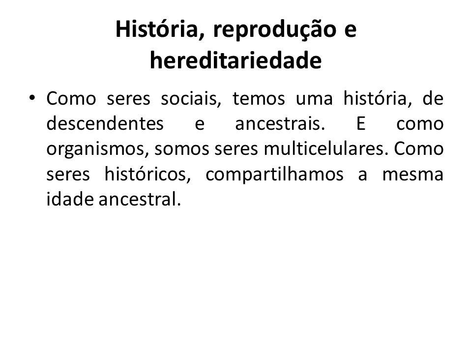 História, reprodução e hereditariedade Como seres sociais, temos uma história, de descendentes e ancestrais. E como organismos, somos seres multicelul