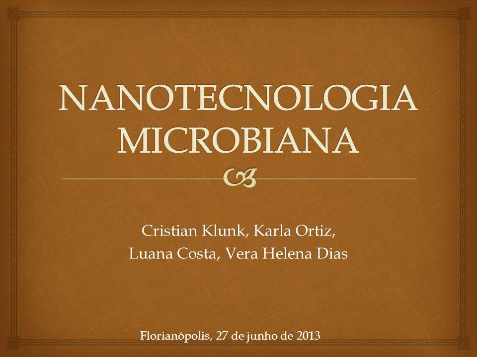 Cristian Klunk, Karla Ortiz, Luana Costa, Vera Helena Dias Florianópolis, 27 de junho de 2013