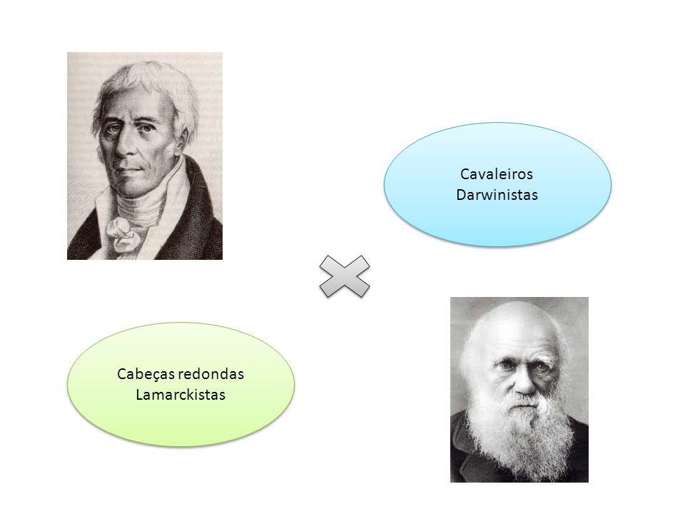 Cabeças redondas Lamarckistas Cabeças redondas Lamarckistas Cavaleiros Darwinistas