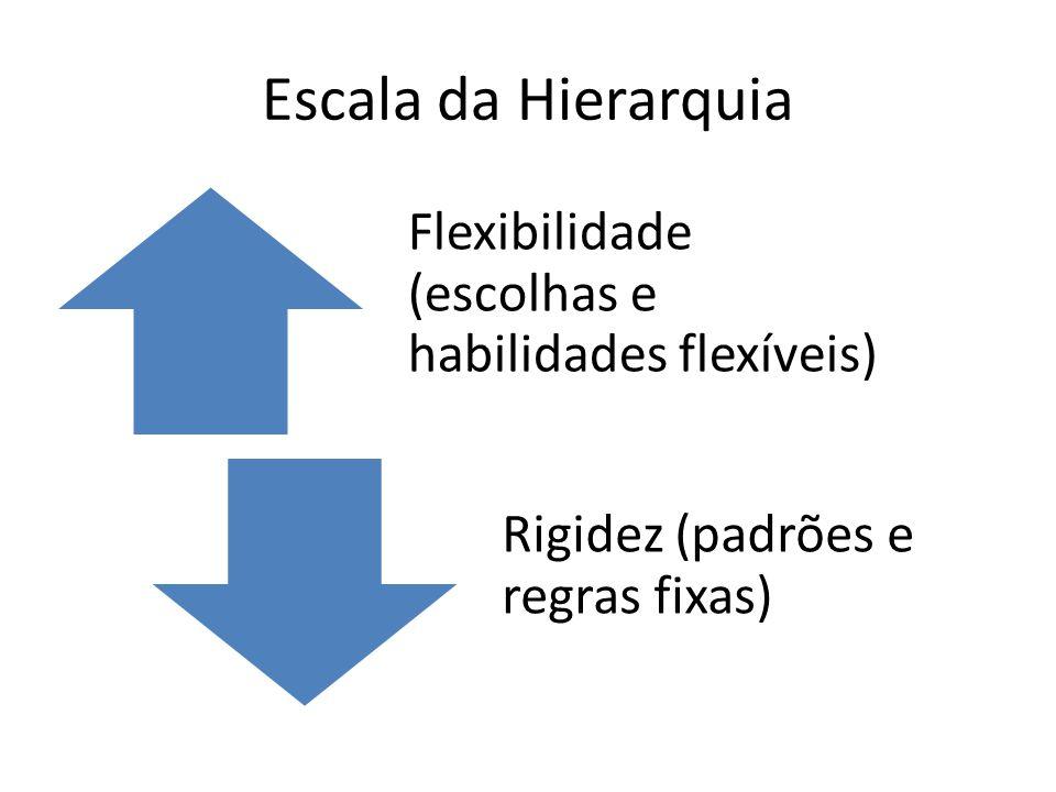 Escala da Hierarquia Flexibilidade (escolhas e habilidades flexíveis) Rigidez (padrões e regras fixas)