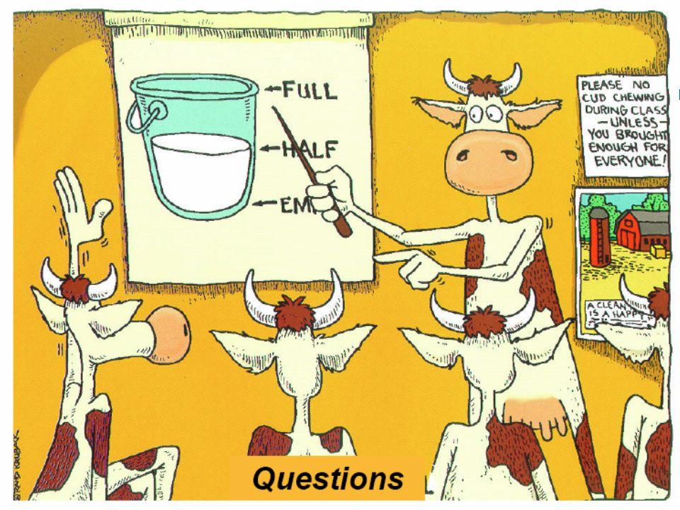 Perguntas?