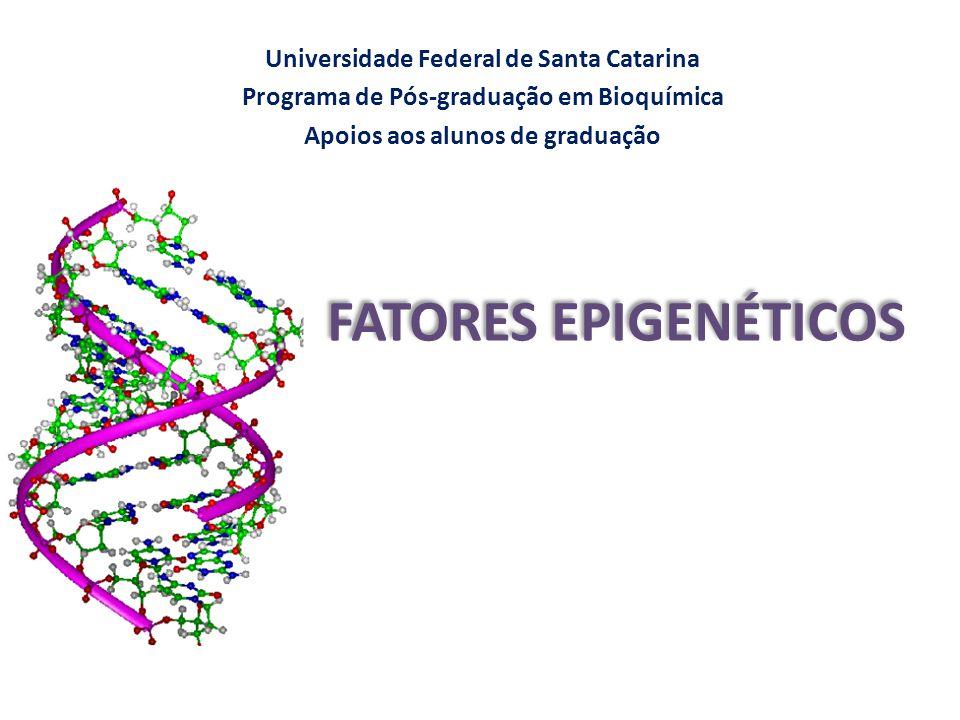 Universidade Federal de Santa Catarina Programa de Pós-graduação em Bioquímica Apoios aos alunos de graduação