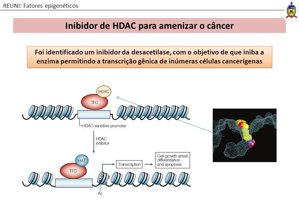 Inibidor de HDAC para amenizar o câncer REUNI: Fatores epigenéticos Foi identificado um inibidor da desacetilase, com o objetivo de que iniba a enzima