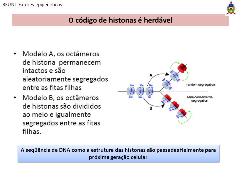 O código de histonas é herdável REUNI: Fatores epigenéticos A seqüência de DNA como a estrutura das histonas são passadas fielmente para próxima geraç