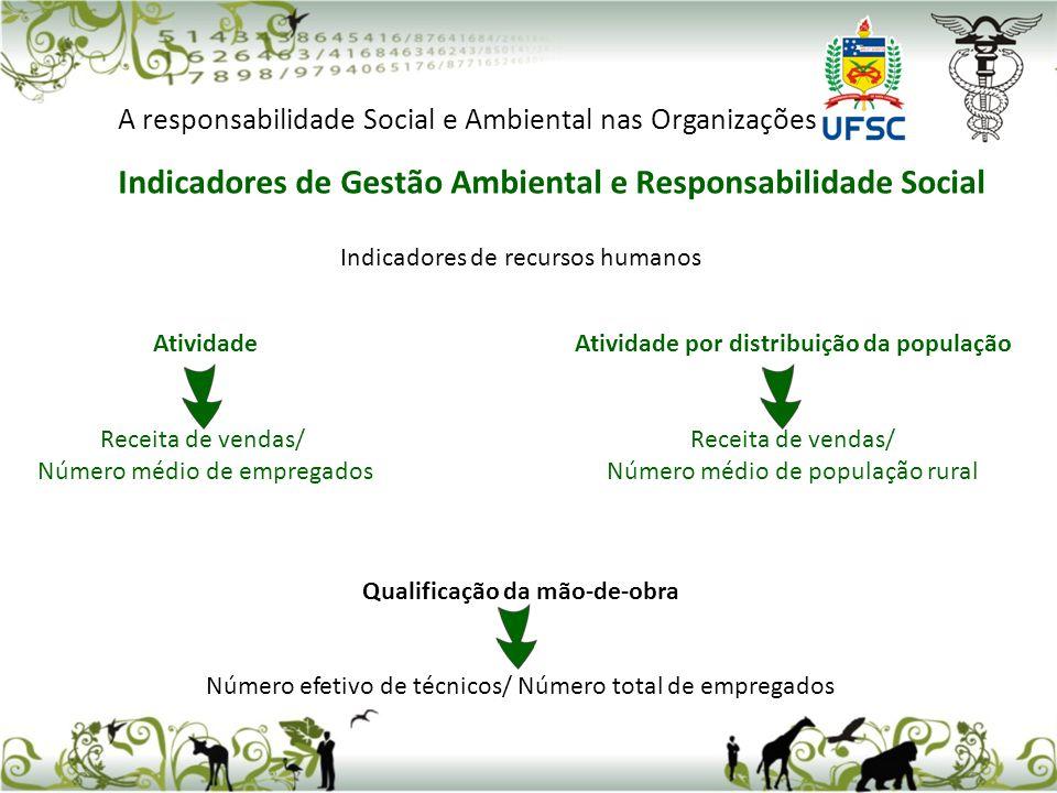Indicadores de recursos humanos Qualificação da mão-de-obra Número efetivo de técnicos/ Número total de empregados A responsabilidade Social e Ambient