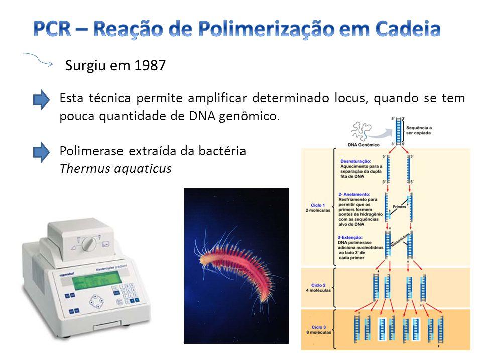 Surgiu em 1987 Esta técnica permite amplificar determinado locus, quando se tem pouca quantidade de DNA genômico. Polimerase extraída da bactéria Ther