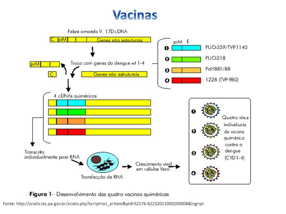 Fonte: http://scielo.iec.pa.gov.br/scielo.php?script=sci_arttext&pid=S2176-62232011000200008&lng=pt