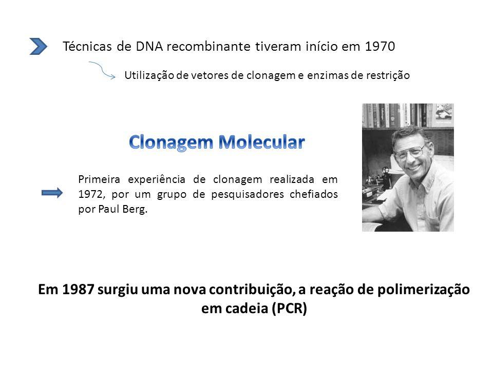 Técnicas de DNA recombinante tiveram início em 1970 Utilização de vetores de clonagem e enzimas de restrição Primeira experiência de clonagem realizad