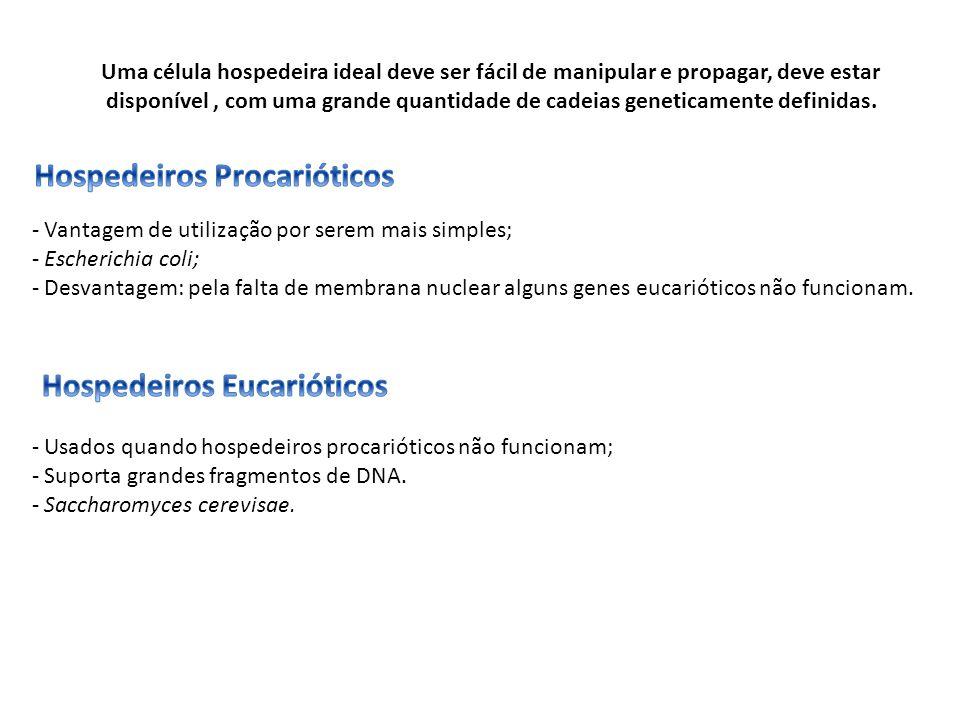 - Vantagem de utilização por serem mais simples; - Escherichia coli; - Desvantagem: pela falta de membrana nuclear alguns genes eucarióticos não funci