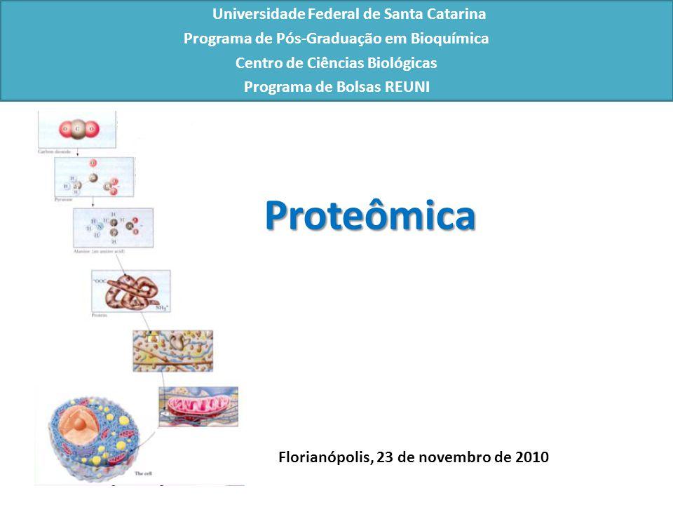 Universidade Federal de Santa Catarina Programa de Pós-Graduação em Bioquímica Centro de Ciências Biológicas Programa de Bolsas REUNI Florianópolis, 23 de novembro de 2010 Proteômica
