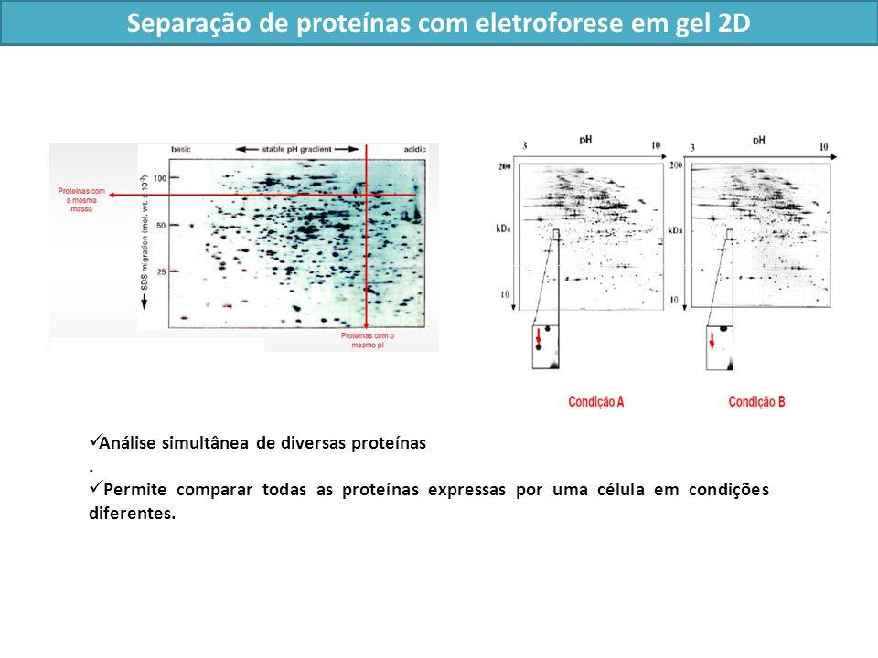 Análise simultânea de diversas proteínas.