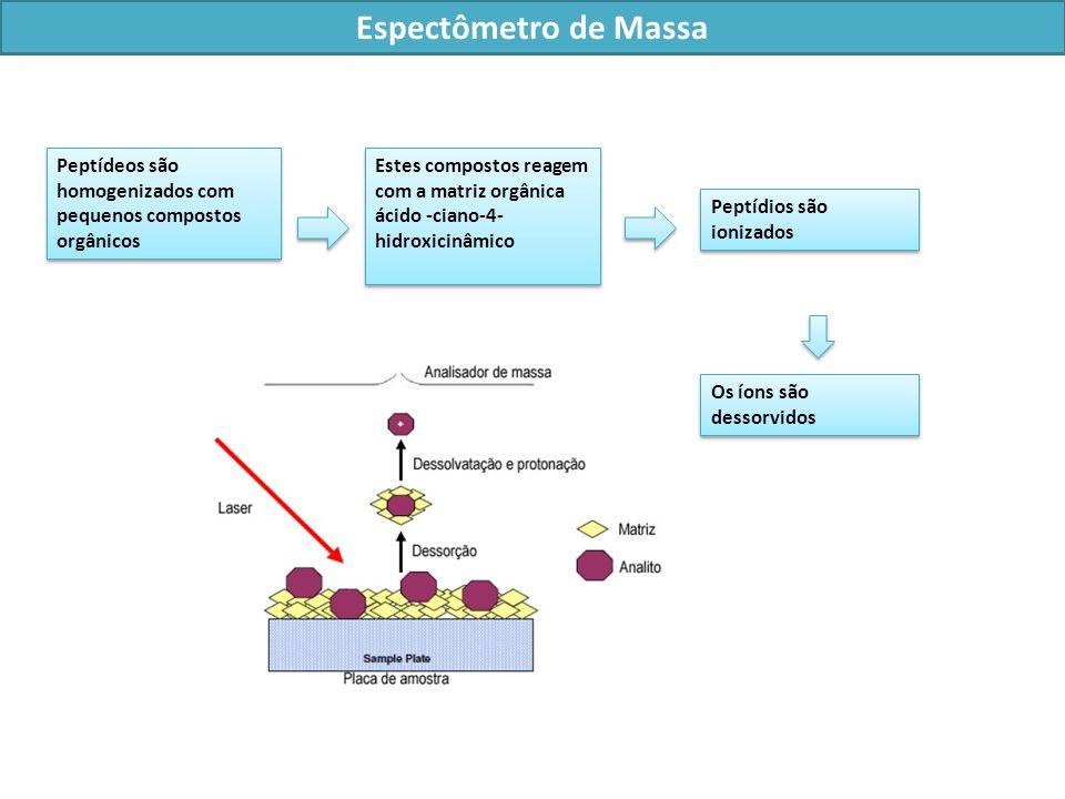 Peptídios são ionizados Os íons são dessorvidos Peptídeos são homogenizados com pequenos compostos orgânicos Estes compostos reagem com a matriz orgânica ácido -ciano-4- hidroxicinâmico Espectômetro de Massa