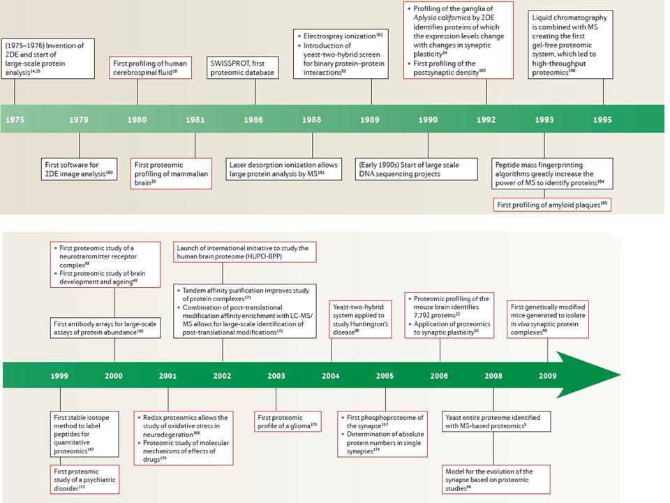Agentes redutores: DTT Solubilização da amostra Agentes Caotrópicos: Uréia e Tiouréia Agentes Surfactantes: CHAPS