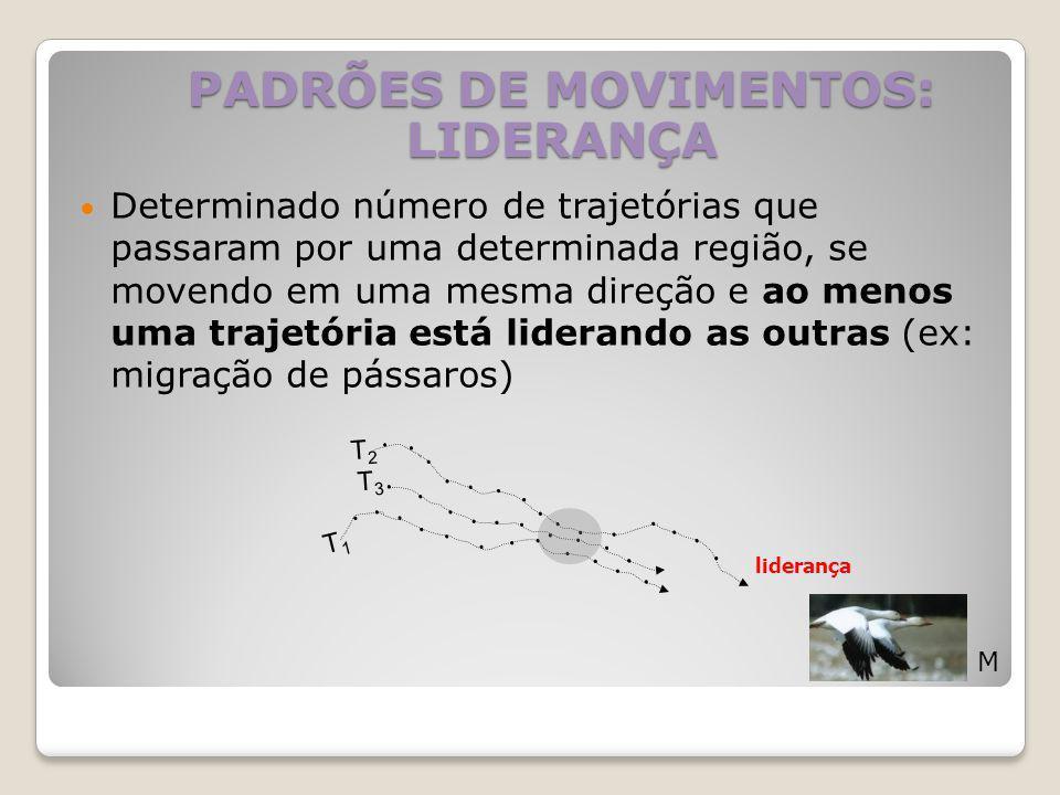 Determinado número de trajetórias que passaram por uma determinada região, se movendo em uma mesma direção e ao menos uma trajetória está liderando as