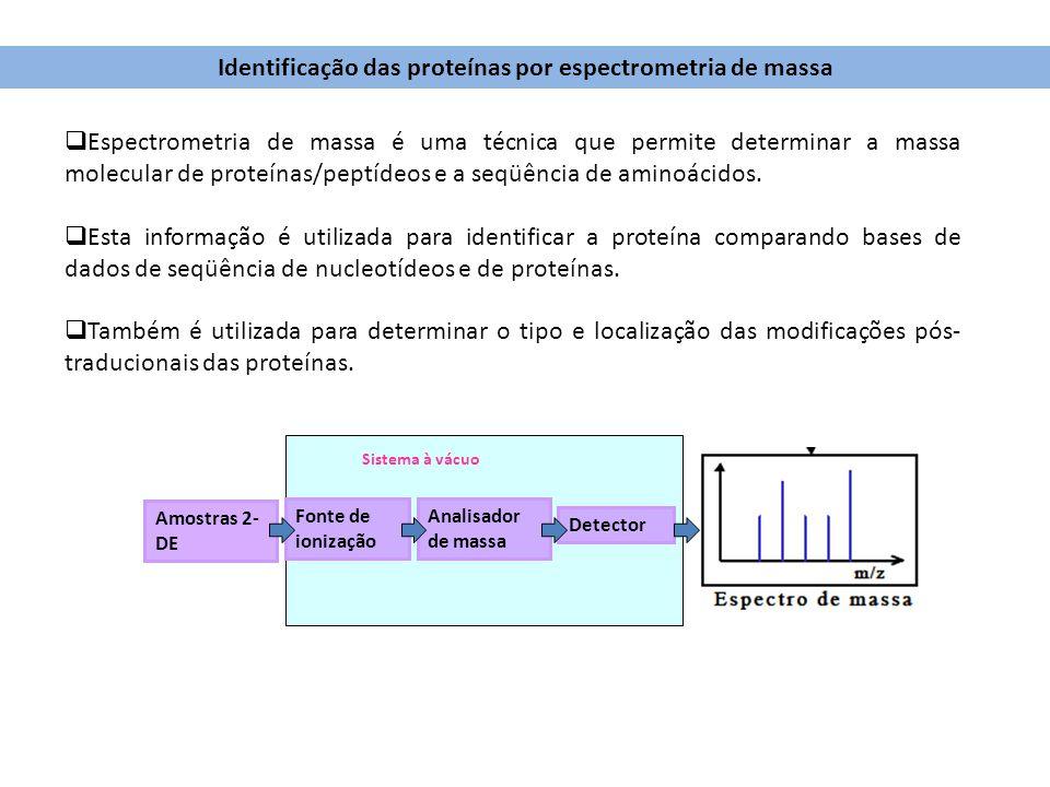Espectrometria de massa é uma técnica que permite determinar a massa molecular de proteínas/peptídeos e a seqüência de aminoácidos. Esta informação é