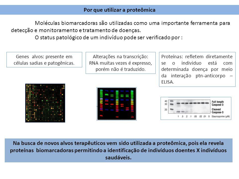 Por que utilizar a proteômica Na busca de novos alvos terapêuticos vem sido utilizada a proteômica, pois ela revela proteínas biomarcadoras permitindo