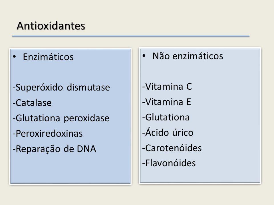 Antioxidantes Enzimáticos -Superóxido dismutase -Catalase -Glutationa peroxidase -Peroxiredoxinas -Reparação de DNA Enzimáticos -Superóxido dismutase