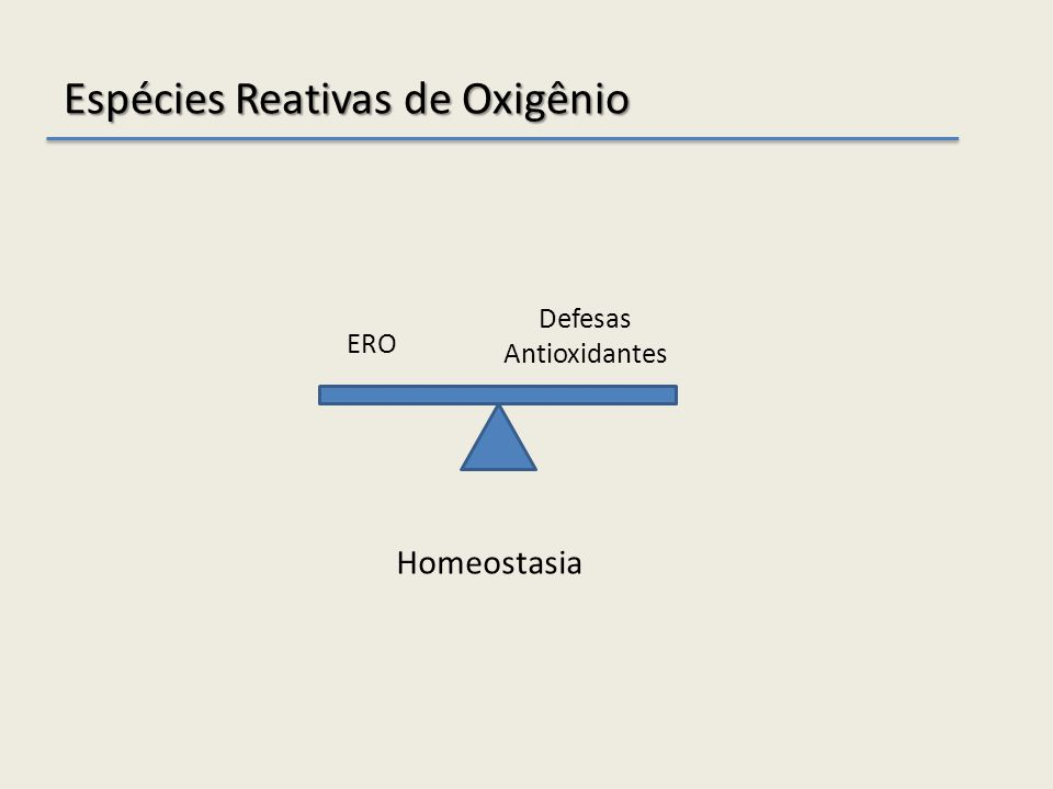 Espécies Reativas de Oxigênio ERO Defesas Antioxidantes Homeostasia