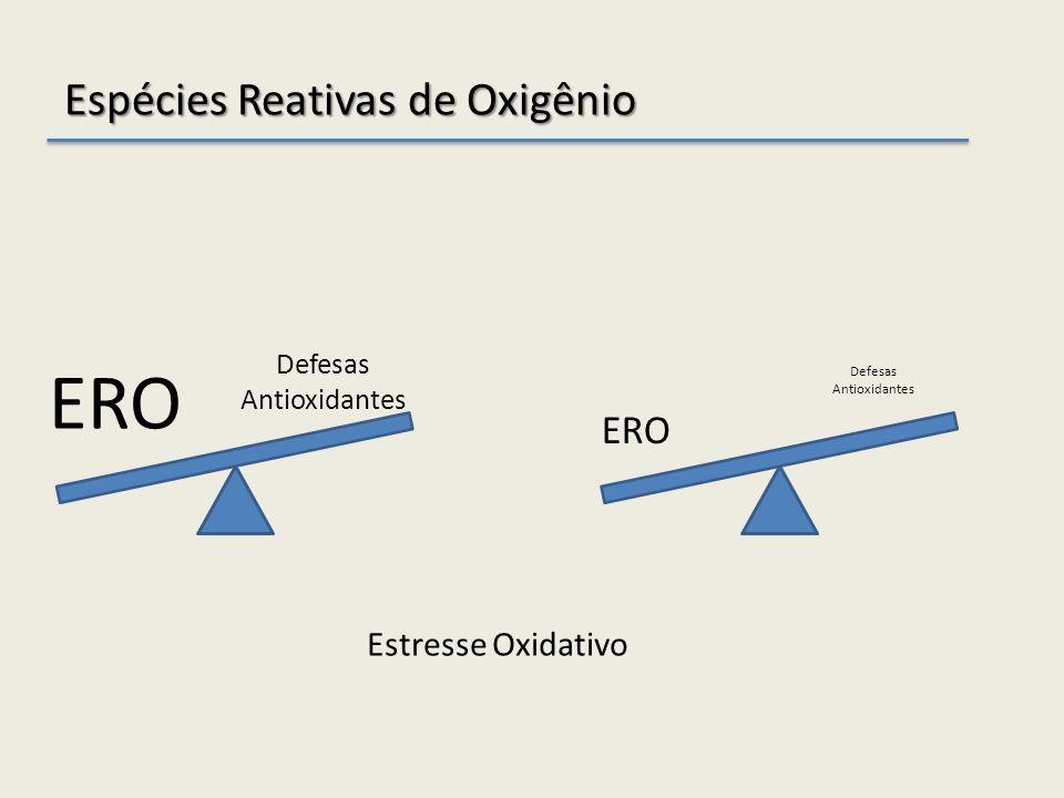 Espécies Reativas de Oxigênio ERO Defesas Antioxidantes ERO Defesas Antioxidantes Estresse Oxidativo