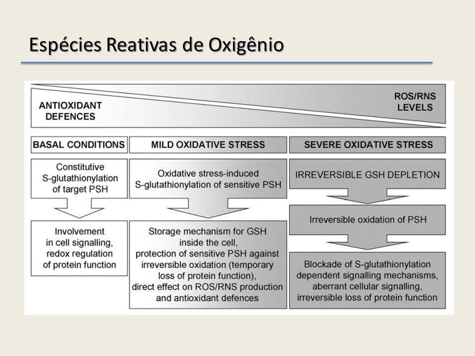 Espécies Reativas de Oxigênio