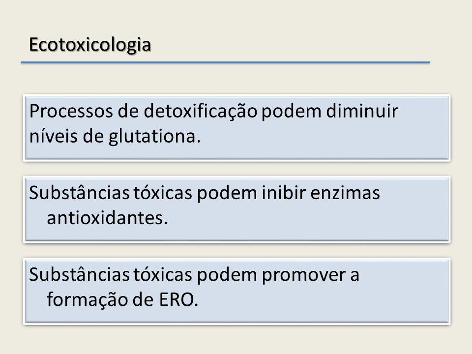 Ecotoxicologia Substâncias tóxicas podem inibir enzimas antioxidantes. Substâncias tóxicas podem promover a formação de ERO. Processos de detoxificaçã
